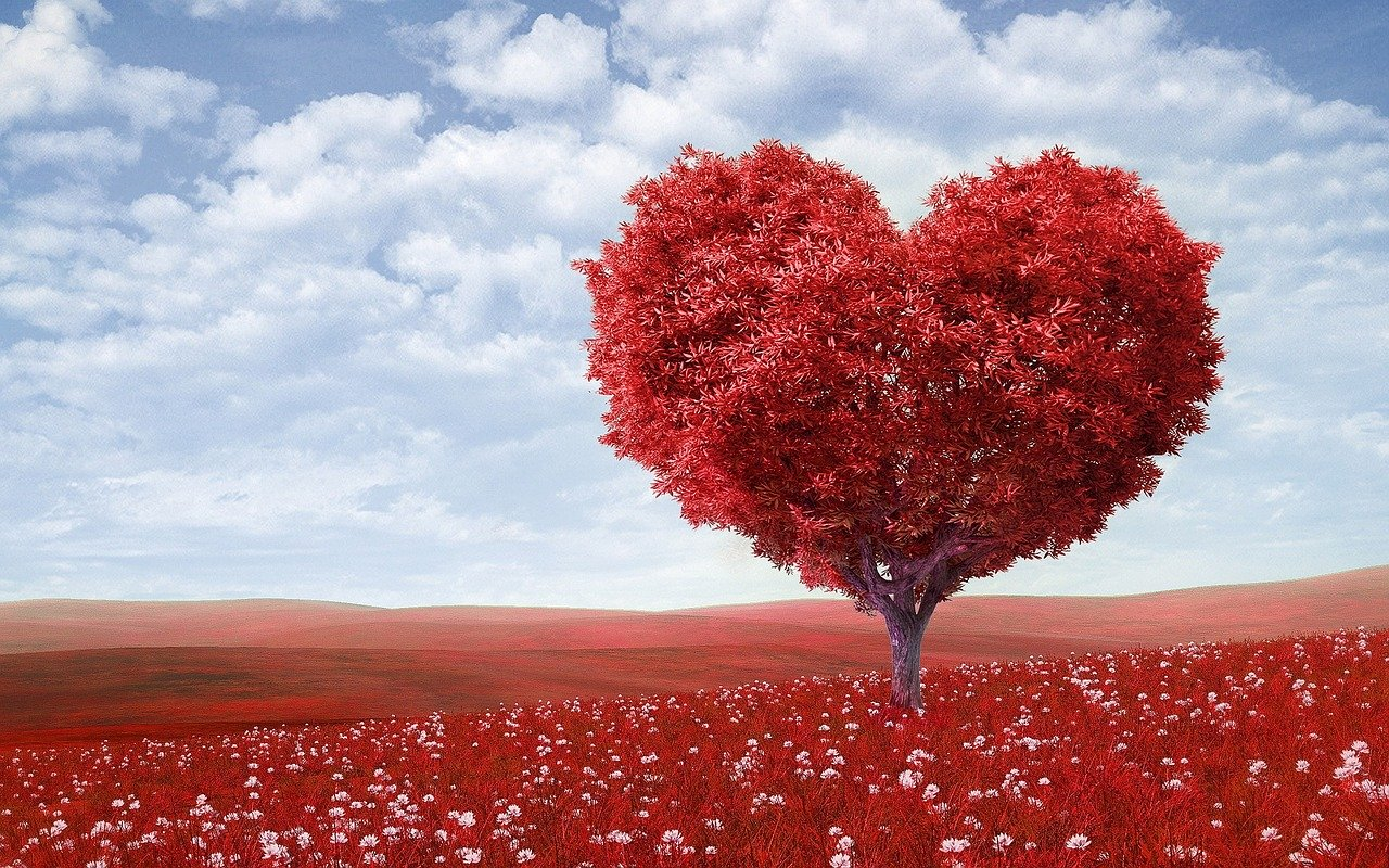 valentinstag-geschenk-freundin-freund